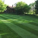 Lawn Fertilization Sappington MO 63128