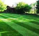 Lawn Mowing Webster Groves MO 63119