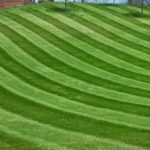 Lawn Mowing Arnold MO 63010