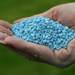 Fertilization Overseeding Oakville MO 63129