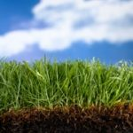 Lawn Fertilization Kirkwood MO 63122